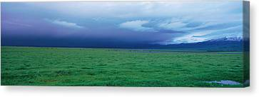 Field Of Grass Under Winter Storm Canvas Print by Panoramic Images