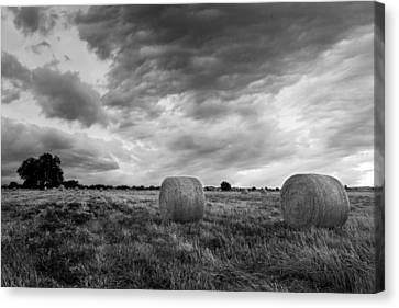 Field Of Hay Black And White 2 Canvas Print by Paul Huchton