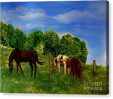 Field Of Horses' Dreams Canvas Print by Kimberlee Baxter