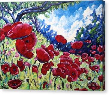 Field Of Poppies 02 Canvas Print by Richard T Pranke