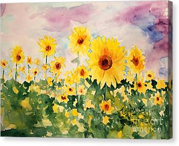 Canvas Print - Field Of Sun by Tina Sheppard