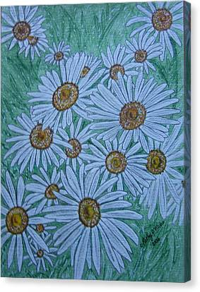 Field Of Wild Daisies Canvas Print by Kathy Marrs Chandler