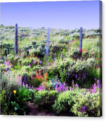 Canvas Print featuring the photograph Field Of Wildflowers by Karen Shackles