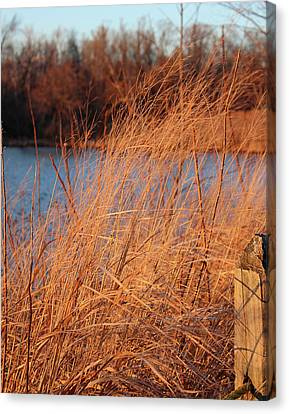 Amber Brush On The River Canvas Print
