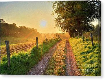 Field Road Canvas Print by Veikko Suikkanen