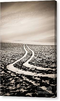 Field With Snow-covered Furrows. Auverge. France. Europe. Canvas Print by Bernard Jaubert