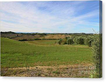 Fields In Tuscany Italy Canvas Print