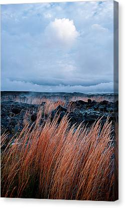 Fields Of Fire Canvas Print