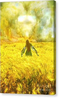 Fields Of Gold Canvas Print by Eugene James