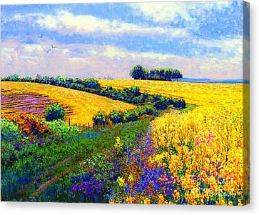 Country Scene Canvas Print - Fields Of Gold by Jane Small