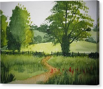 Fields Of Green Canvas Print by Shirley Braithwaite Hunt