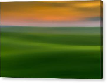 Fields Of Green Canvas Print by TL Mair
