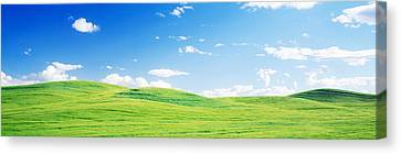 Fields Whitman Co Wa Usa Canvas Print by Panoramic Images