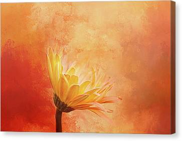 Summer Light Canvas Print - Fiery Beauty by Terry Davis