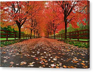 Fiery Canvas Print