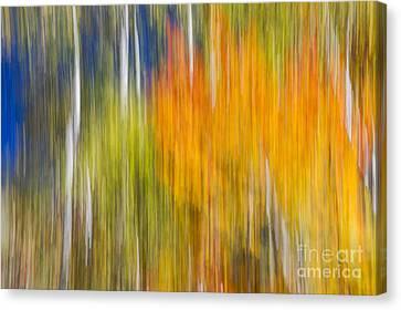 Fiery Fall Canvas Print by Elena Elisseeva