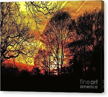 Fiery Red Sunset Canvas Print by Carol F Austin