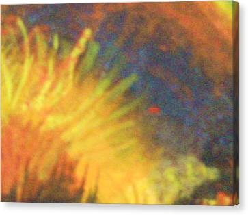 Fiery Tempest Canvas Print by Anne-Elizabeth Whiteway