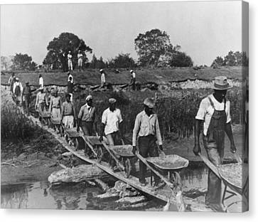 Fifteen African American Laborers Canvas Print by Everett