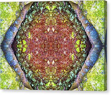 Fifth Dimension Canvas Print