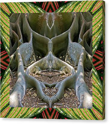 Fig Tree Ally Canvas Print by Bell And Todd