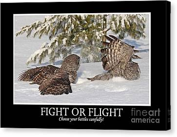 Fight Or Flight Canvas Print