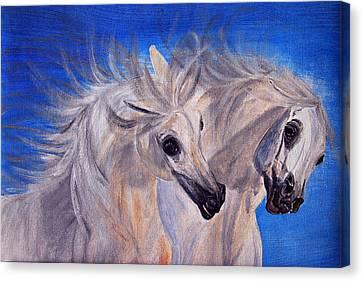 Fighting Stallions Canvas Print by ELA-EquusArt