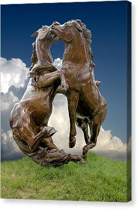 Crazy Horse Canvas Print - Fighting Stallions by Rich Stedman