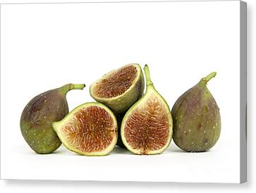 Figs Canvas Print by Bernard Jaubert