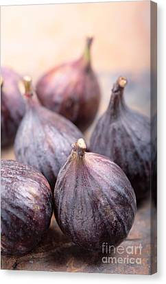 Figs Canvas Print by Neil Overy
