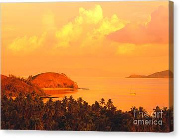 Fiji Mana Island Canvas Print by Dave Fleetham - Printscapes