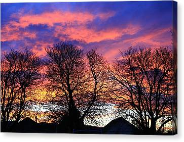 Canvas Print featuring the painting Filigree Sunset by Nareeta Martin
