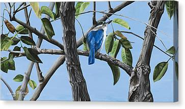 Filipino Kingfisher Canvas Print by Wendy Ballentyne