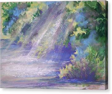 Filtered Light Canvas Print by Becky Chappell