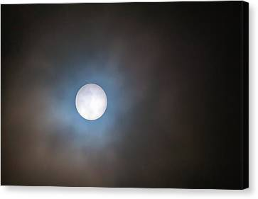 Filtered Sun Canvas Print by David Gn