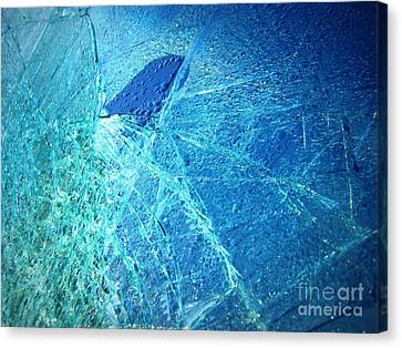 Canvas Print featuring the photograph Fin  by Kristine Nora
