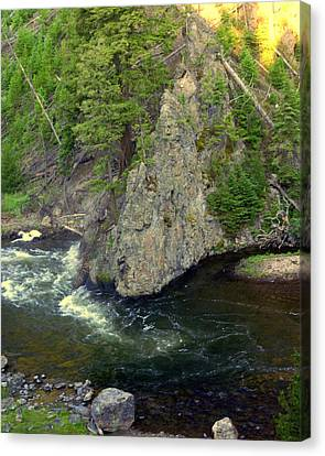 Fin On The Firehole Canvas Print by Marty Koch