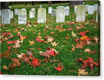 Final Resting Place Canvas Print by Tom Weisbrook