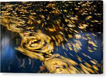 Finding Center - Autumn Abstract Canvas Print by Steven Milner