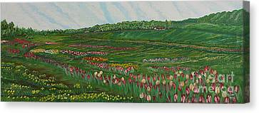 Finding The Way To You - Spring In Emmental Canvas Print by Felicia Tica