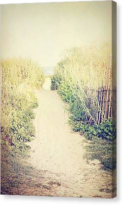 Canvas Print featuring the photograph Finding Your Way by Trish Mistric