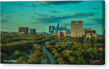 Pool In Cave Canvas Print - Fine Art America Pic 118 Houston Skyline by Darrell Taylor