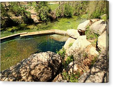 Pool In Cave Canvas Print - Fine Art America Pic 120 Jacobs Well Park by Darrell Taylor