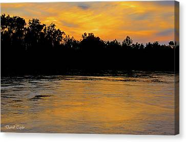 Fine Art America Pic 167 Only In Texas Canvas Print by Darrell Taylor