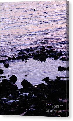 Fine Art - Still Waters Canvas Print