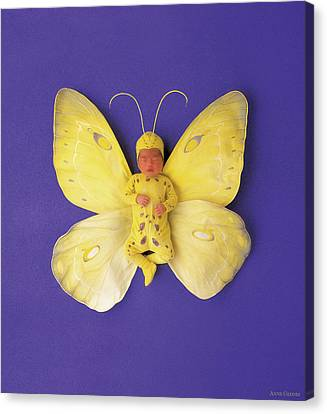 Fiona Butterfly Canvas Print by Anne Geddes