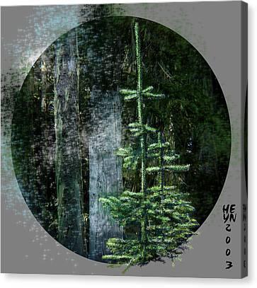 Fir Trees - 3 Ages Canvas Print