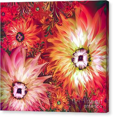 Fire Asters Canvas Print by Mindy Sommers