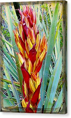 Fire Dance Of The Blue Agave Canvas Print by Dan Turner