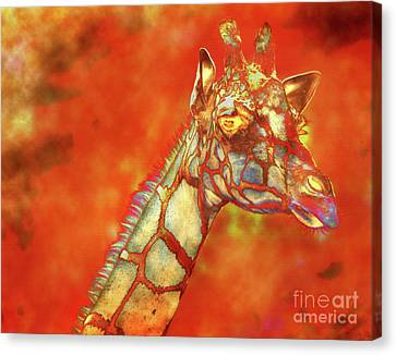 Fire In Africa Canvas Print by David Millenheft